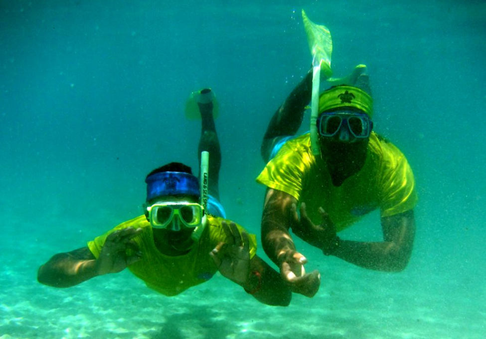 Dive2.png