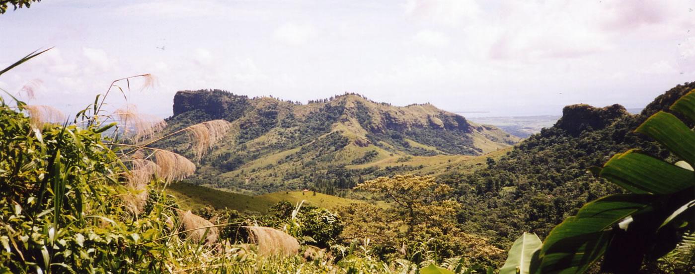 essay on sugar industry in fiji